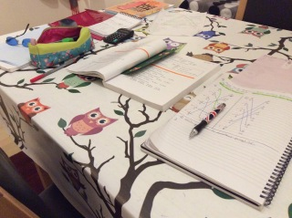 studying books on dining table