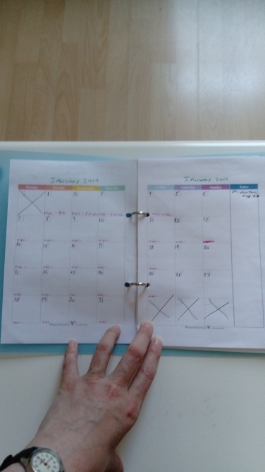 inside of next years diary showing my monthly planner
