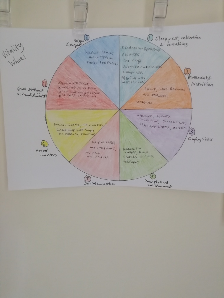 Image of my Vitality Wheel