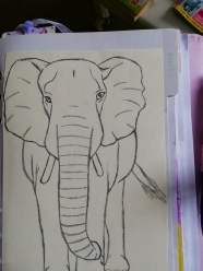 Divider labelled diary and i have stuck a drawn elephant on this divider