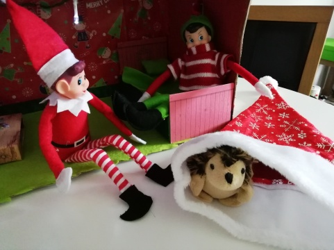 Hedgehog in santa hat while the elves look on