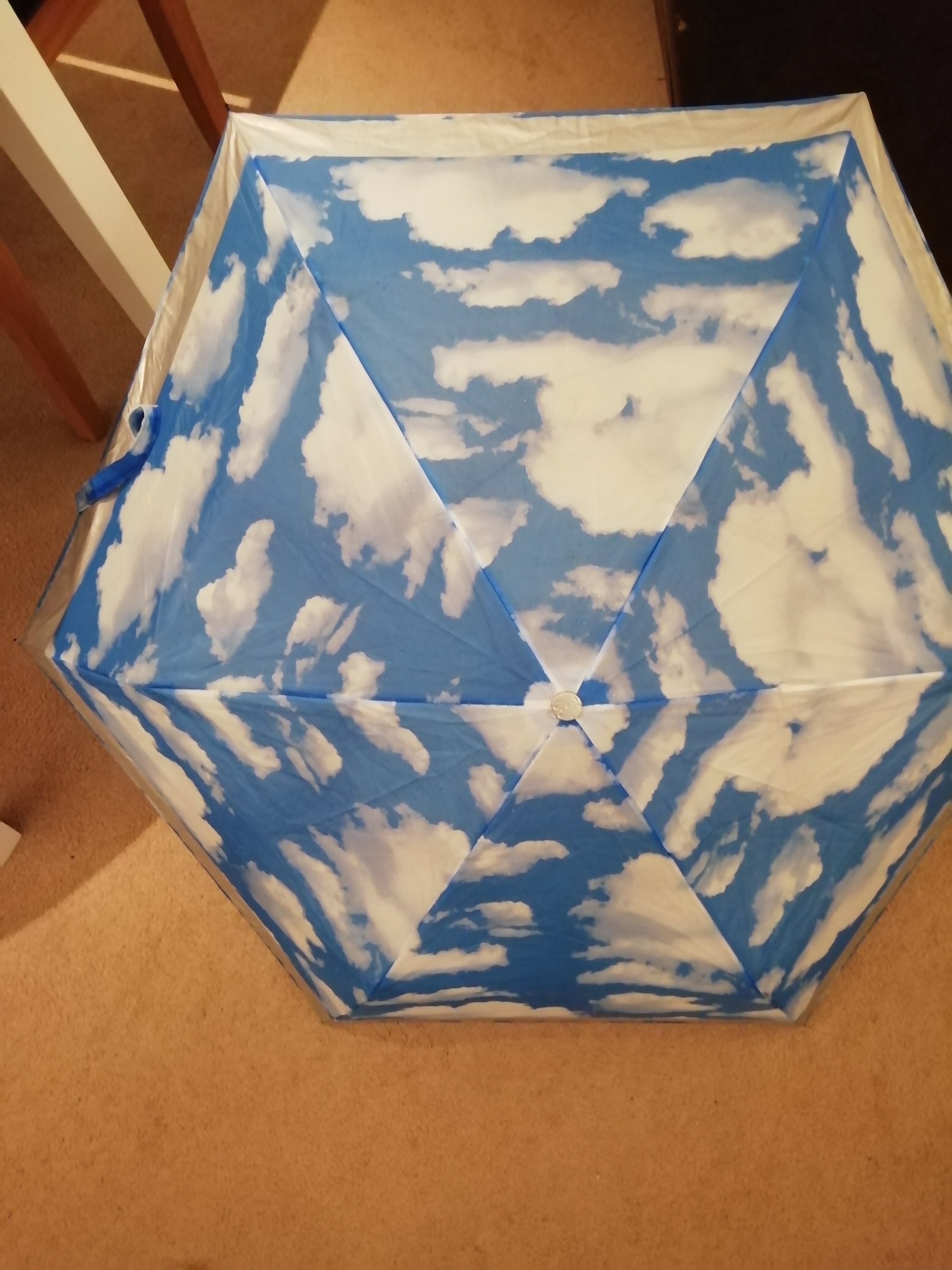My umbrella which has blue sky and fluffy white clouds on it