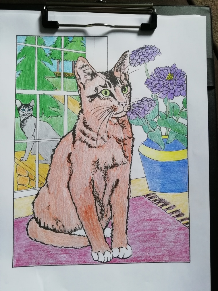 Cat picture i have coloured in. Cat sat in front of window looking towards, with a vase of flowers to the right. In the background outside, you can see another cat looking towards the window. There are trees and a lawn outside.